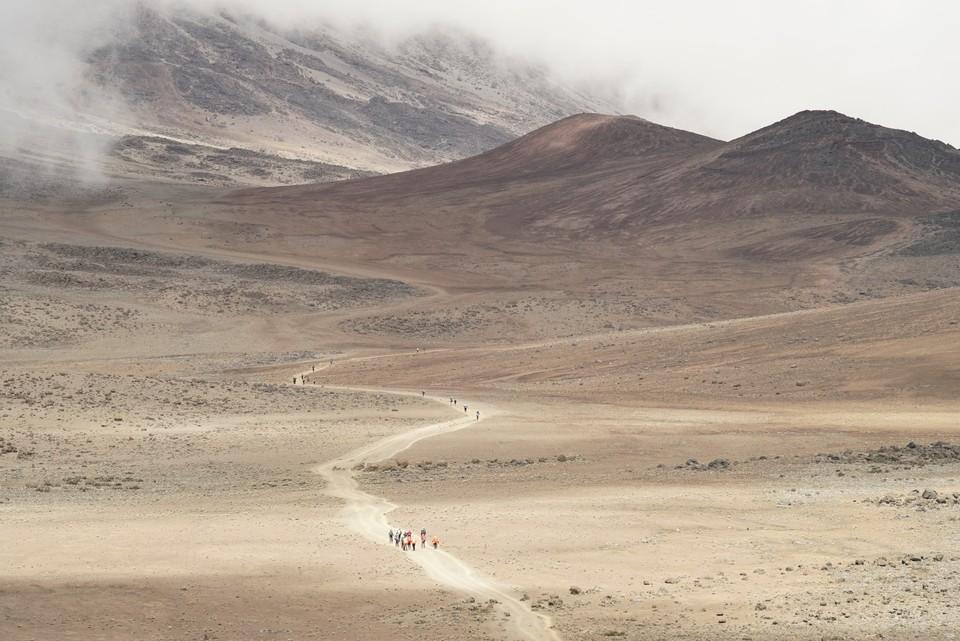 Kilimandzaro (AFR08351)