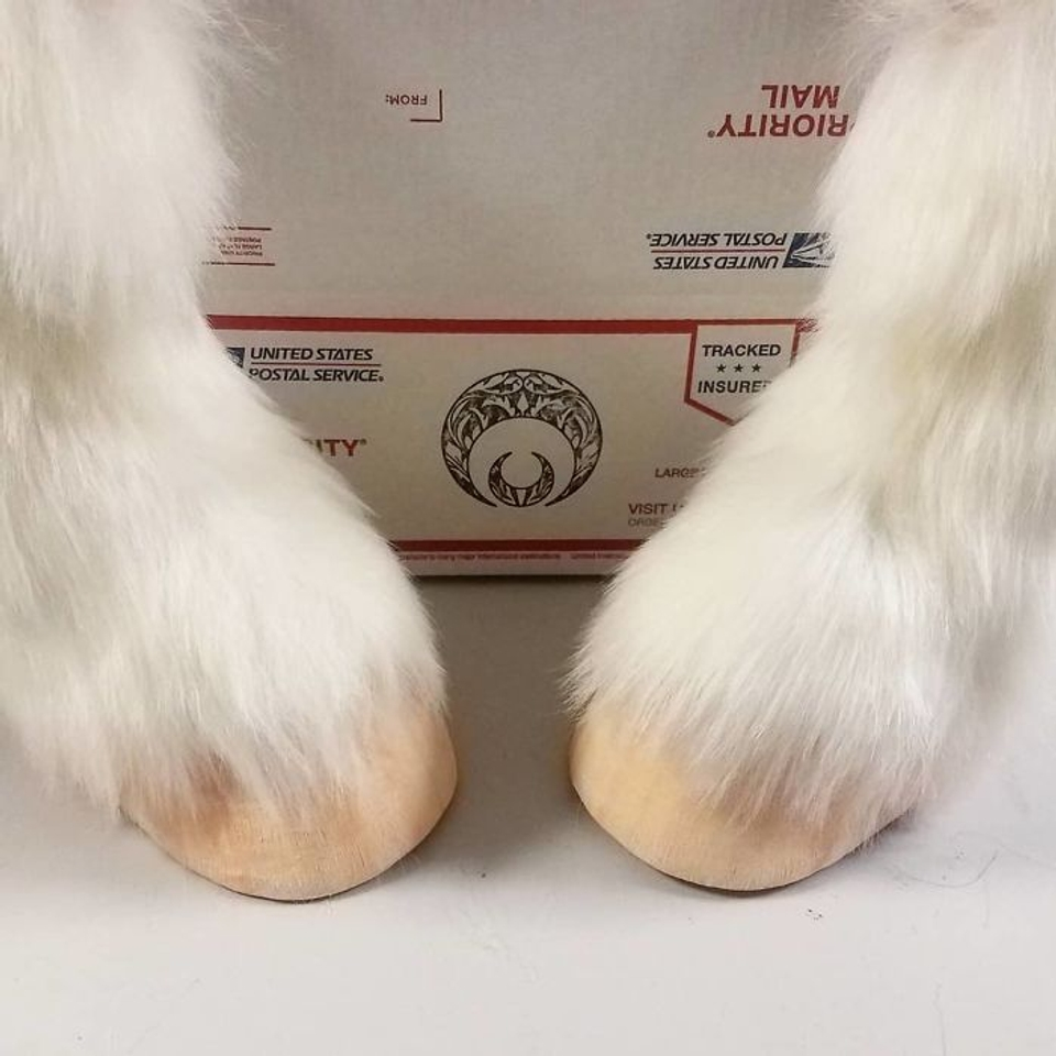 Artist-creates-shoes-in-the-shape-of-animal-hooves-and-the-result-is-impressive-5d7606ebe0716__700
