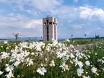 Rozhľadňa Čerešenka od Ľuba z Družstevnej pri Hornáde