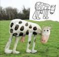 Zvieratá v detskom ponímaní (1)